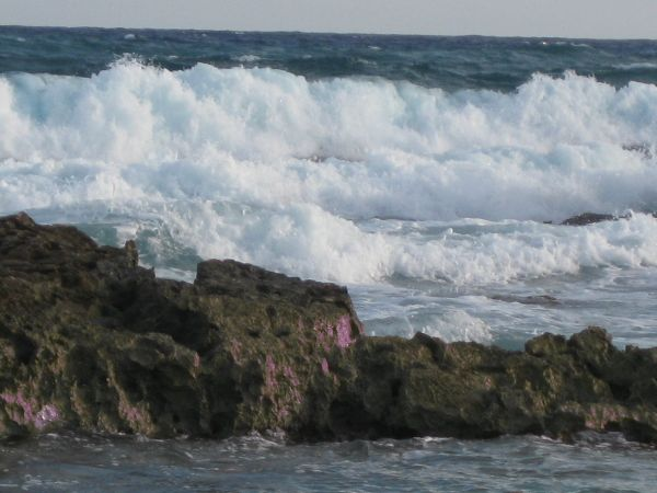 2-Surf at Cozumel Island